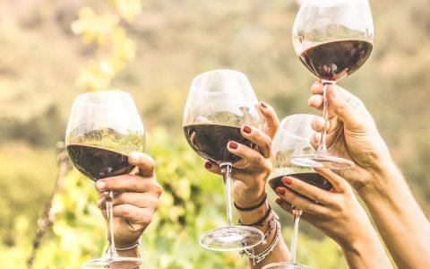 Decanter 2019: Slovenci, ki so za svoja vina prejeli vrhunska priznanja